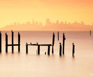Dimineti de aur la San Francisco, de Dmitri Fomin