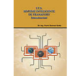I.T.S. Sisteme Inteligente de Transport: Interstructuri