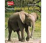 Povestea puiului de elefant