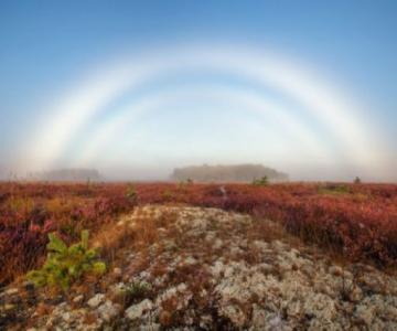 Ipostazele artistice ale naturii, in 15 poze superbe