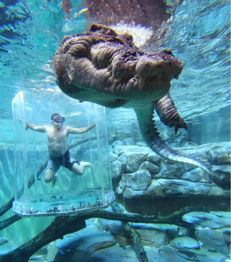 Cele mai cele: Top 12 Piscine spectaculoase din jurul lumii - Poza 4