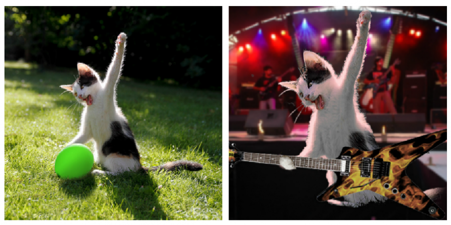 Cele mai haioase poze prelucrate in Photoshop - Poza 2