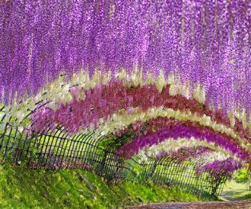Cele mai frumoase 28 de locuri din lume