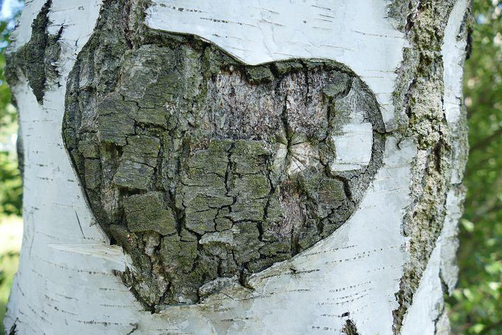 Cantecele sufletelor pereche: Cele mai frumoase poezii de dragoste - Poza 3