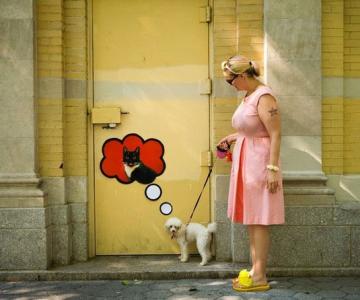 Foto-colaje funny din NYC, de Katie Sokoler