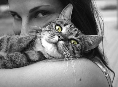 Ce face orice posesor de pisica in secret - Poza 5