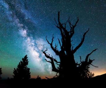 Galaxii stralucitoare, fotografiate de Michael Shainblum