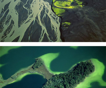 Minunile naturii in miscare, de Bernhard Emaier