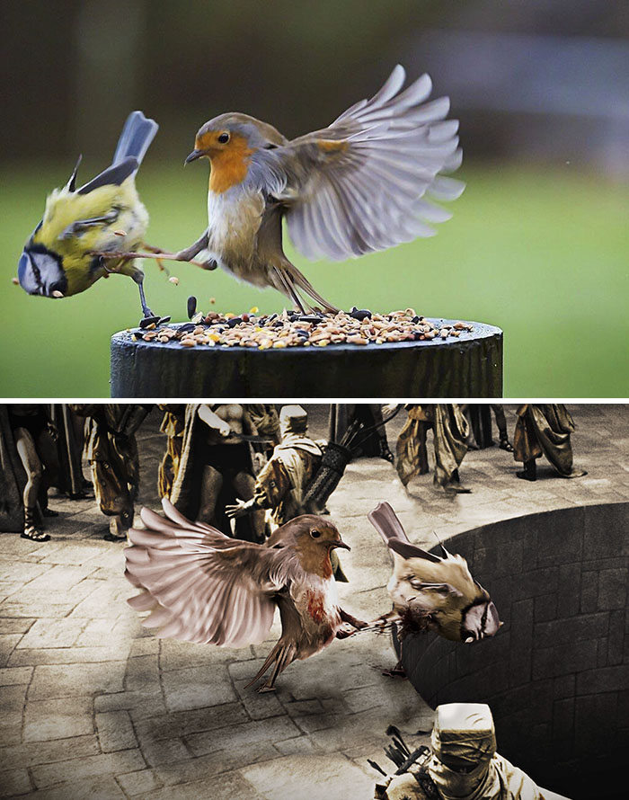 Uimitoare si hilare: Cele mai tari poze prelucrate in Photoshop - Poza 20