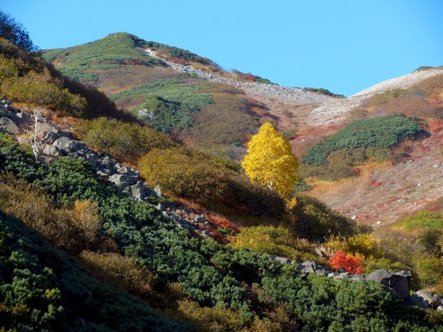 Cele mai frumoase peisaje de toamna, in imagini superbe - Poza 17