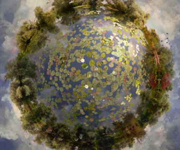Colaje cu globuri pamantesti plutitoare, de Catherine Nelson