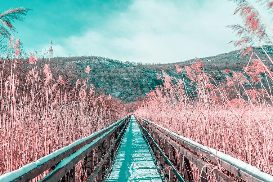 Lumea in infrarosu, intr-un set de fotografii superbe - Poza 22