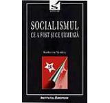 Socialismul. Ce a fost si ce urmeaza