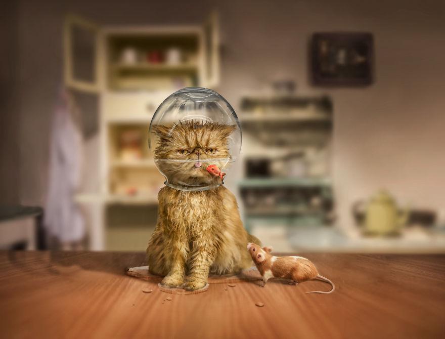 Povesti cu animalute haioase, in poze suprarealiste - Poza 1