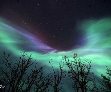 NG 2015: 12 Fotografii spectaculoase, din prestigiosul concurs