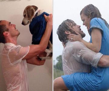 Un catel, star in filme celebre de dragoste