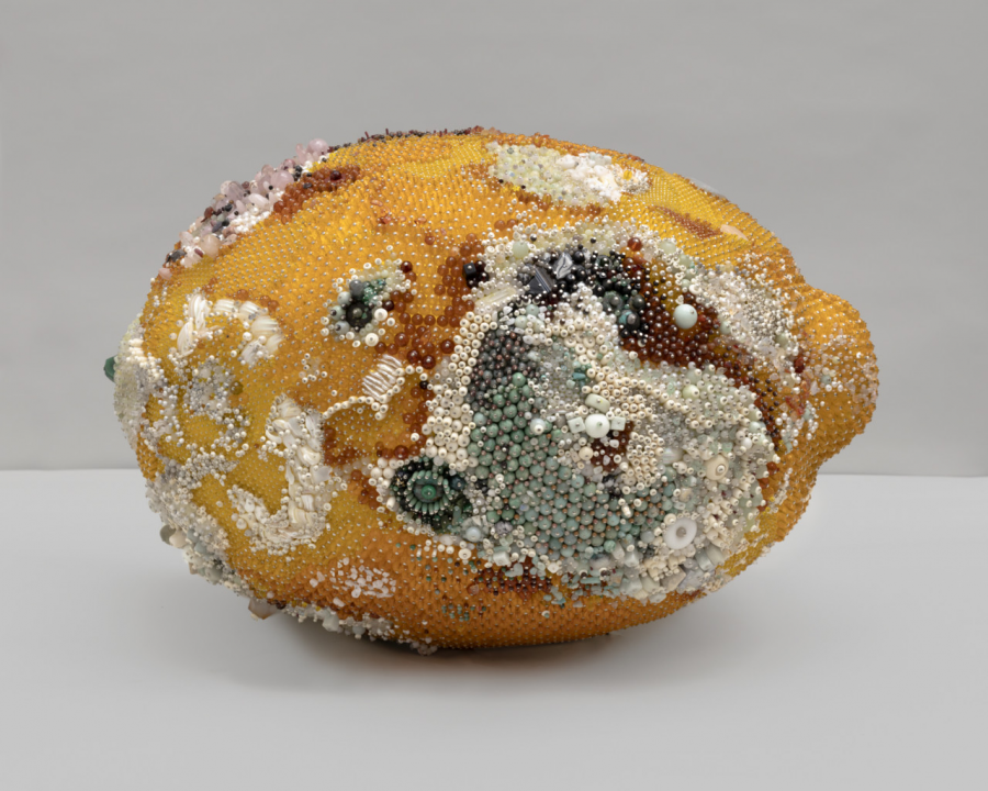 Cand grotescul mucegai se transforma in arta - Poza 11