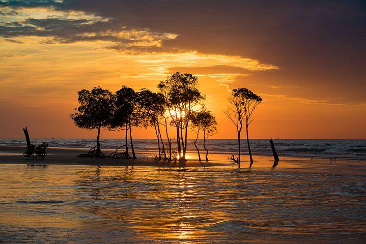 Apusuri de soare sublime in poze spectaculoase - Poza 13