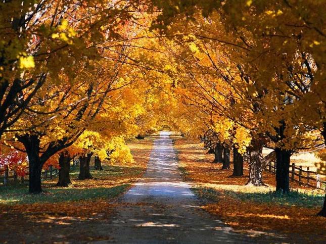 Ai vrea sa mergi pe aceste drumuri? - Poza 4