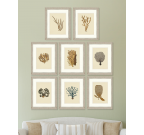 Tablou 8 piese Framed Art Alga Marina Plates
