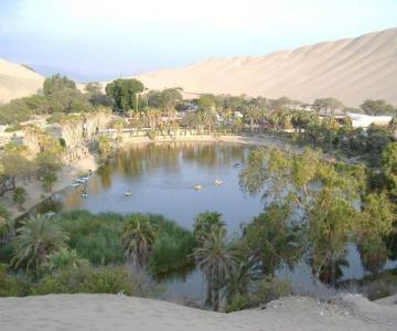 Un colt de rai, in plin desert...