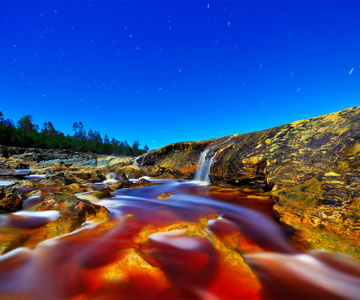 Culorile nebanuite ale naturii de Francisco Mingorance