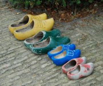 Povestea hotului de pantofi