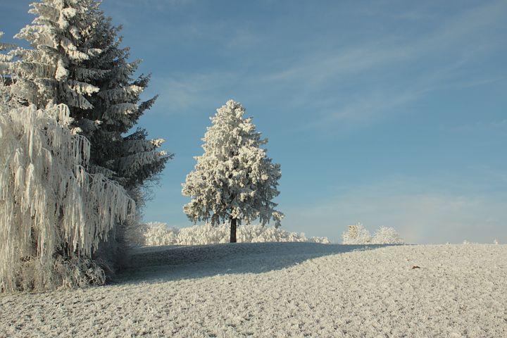 Cele mai frumoase ipostaze ale iernii, in poze sublime - Poza 2
