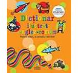 Dictionar ilustrat englez-roman. Pentru acasa la scoala & internet