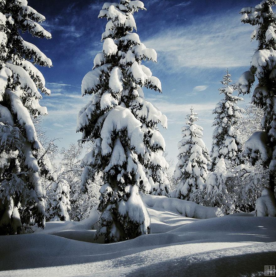 Cele mai frumoase peisaje de iarna - Poza 19