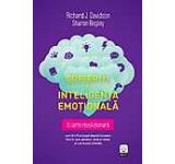 Creierul si inteligenta emotionala