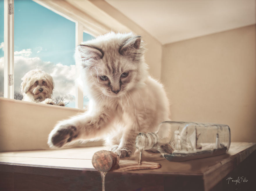 Povesti cu animalute haioase, in poze suprarealiste - Poza 14