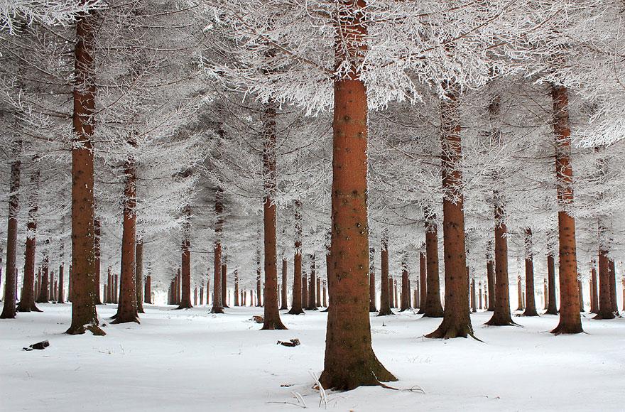 Cele mai frumoase peisaje de iarna - Poza 2