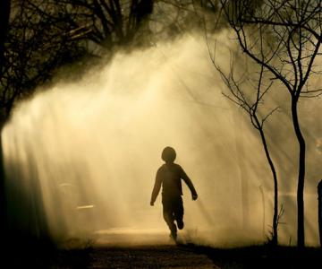 30 de fotografii minunate de Sorin Onisor