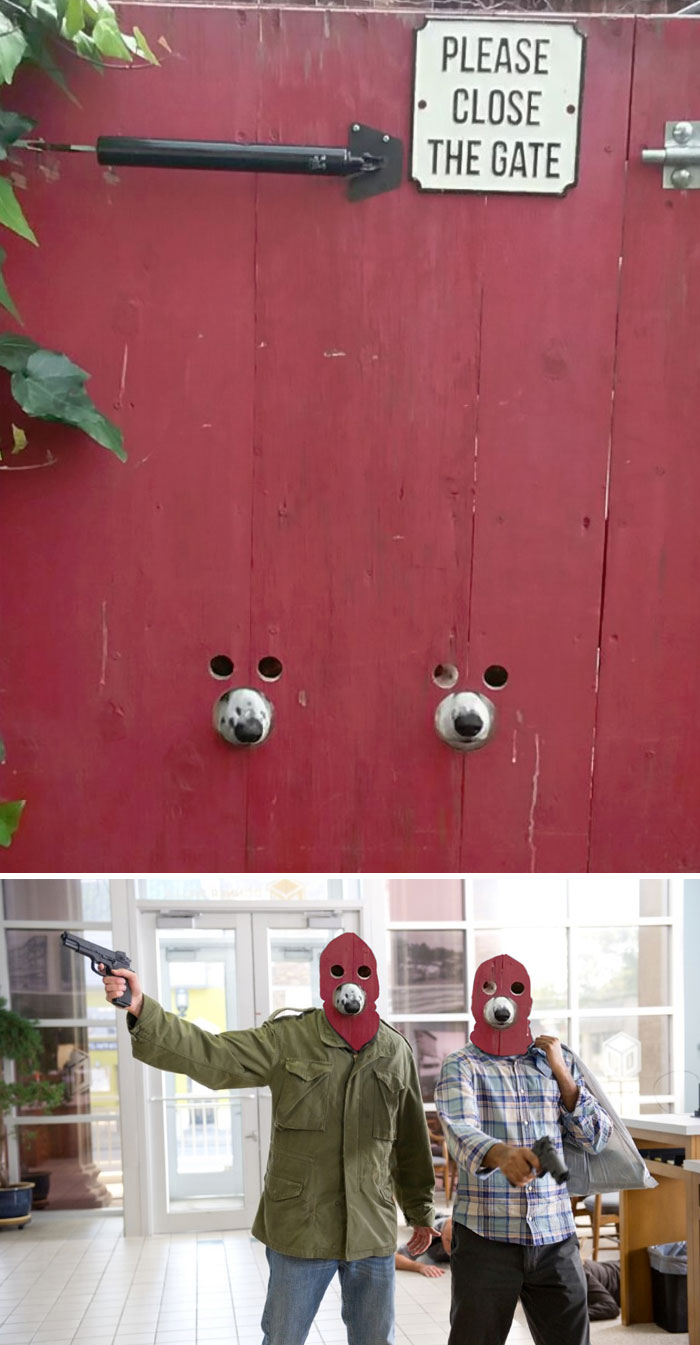 Uimitoare si hilare: Cele mai tari poze prelucrate in Photoshop - Poza 9