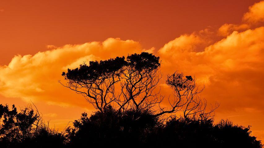Apusuri de soare sublime in poze spectaculoase - Poza 1