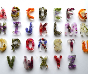 Alfabet din flori si gheata