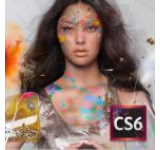 Creative Suite 6 Design and Web Premium Windows Licenta AOO