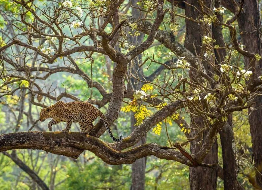 Nat Geo Photo Contest 2019: Cele mai frumoase fotografii de calatorie - Poza 9