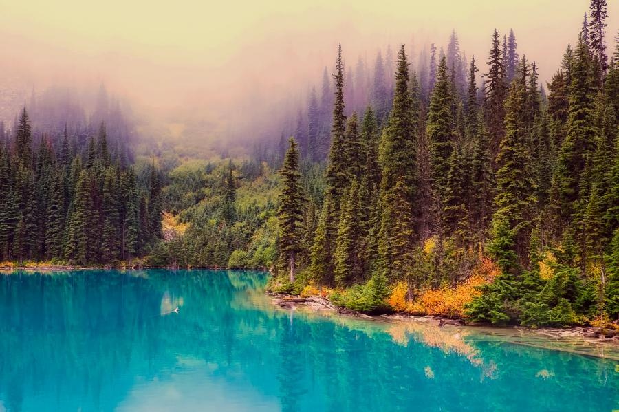 Cele mai frumoase peisaje de toamna, in imagini superbe - Poza 19
