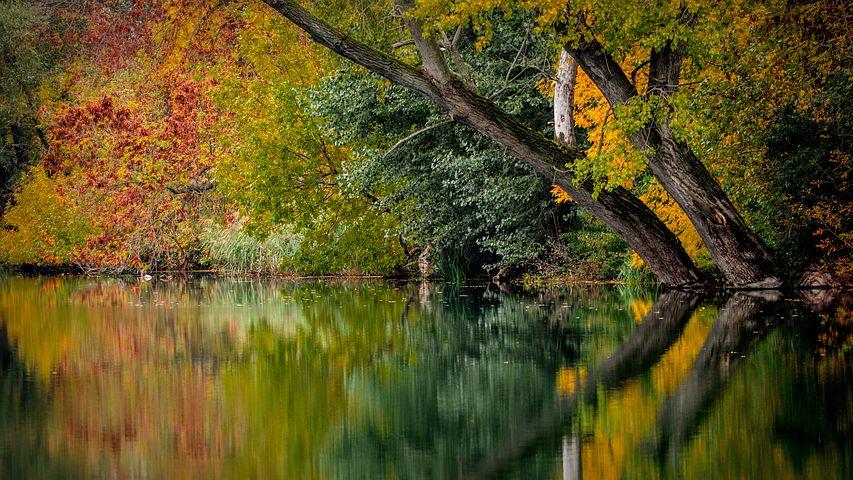 Cele mai frumoase peisaje de toamna, in imagini superbe - Poza 1