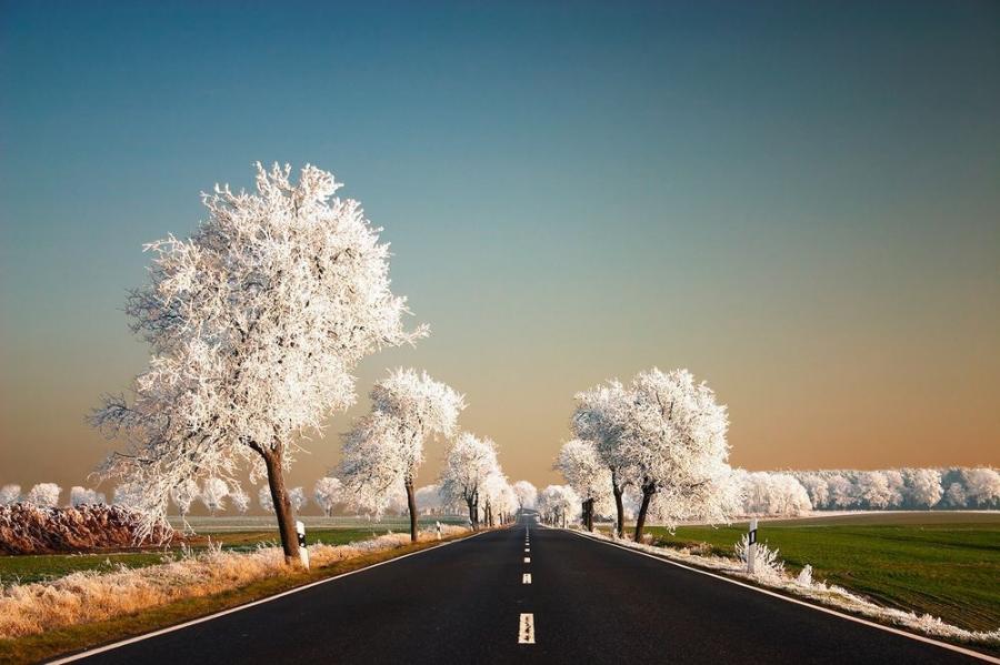 Perfectiunea naturii, in poze sublime - Poza 13