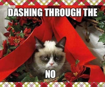 12 dovezi ca pisicile urasc Craciunul