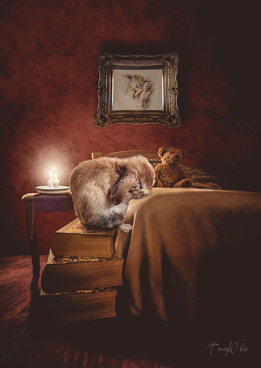 Povesti cu animalute haioase, in poze suprarealiste - Poza 11