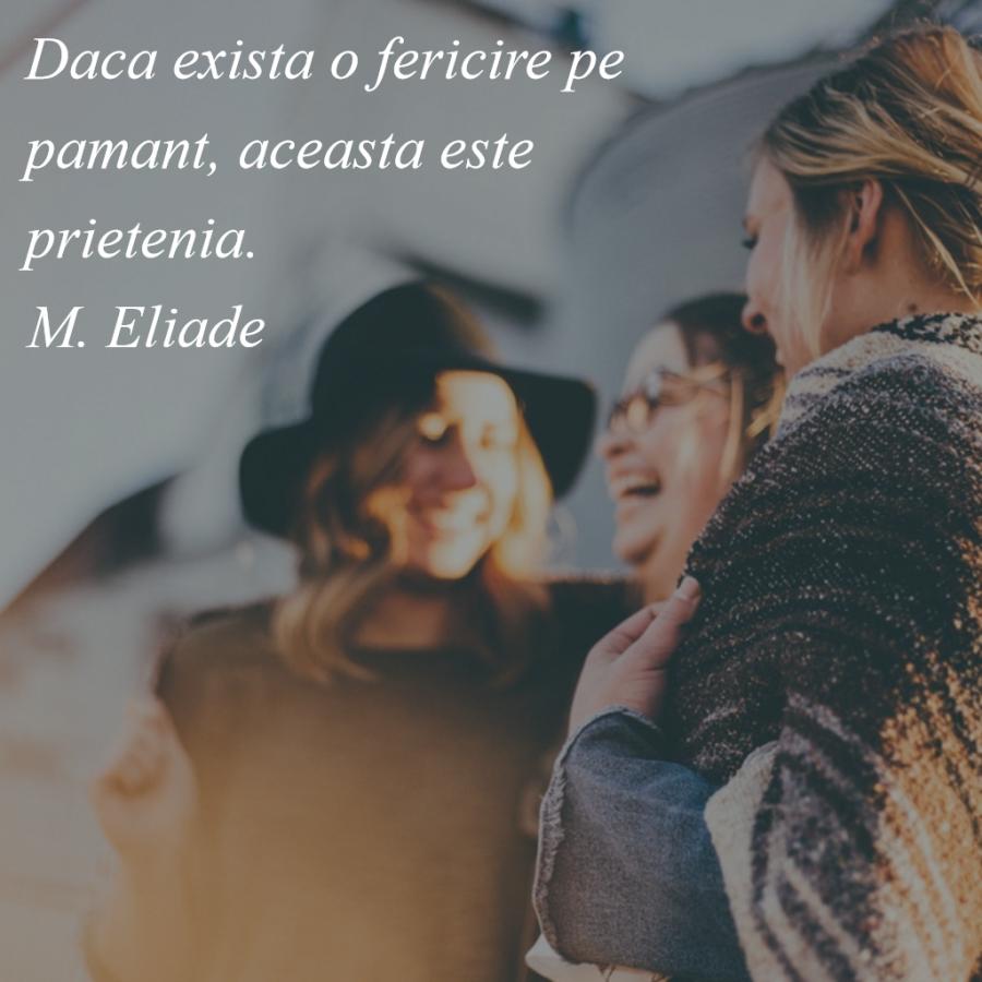 Cele mai frumoase citate despre prietenia adevarata - Poza 12