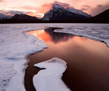 Peisaje canadiene inzapezite, de Wayne Simpson