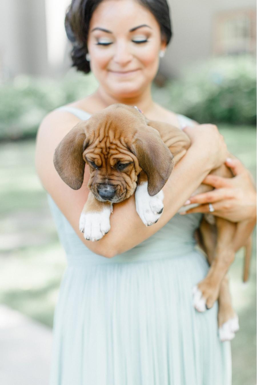 Cum arata imaginile de la nunta unui cuplu iubitor de animale? - Poza 5
