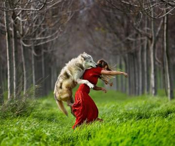 20 de poze extraordinare de Shlomi Nissim