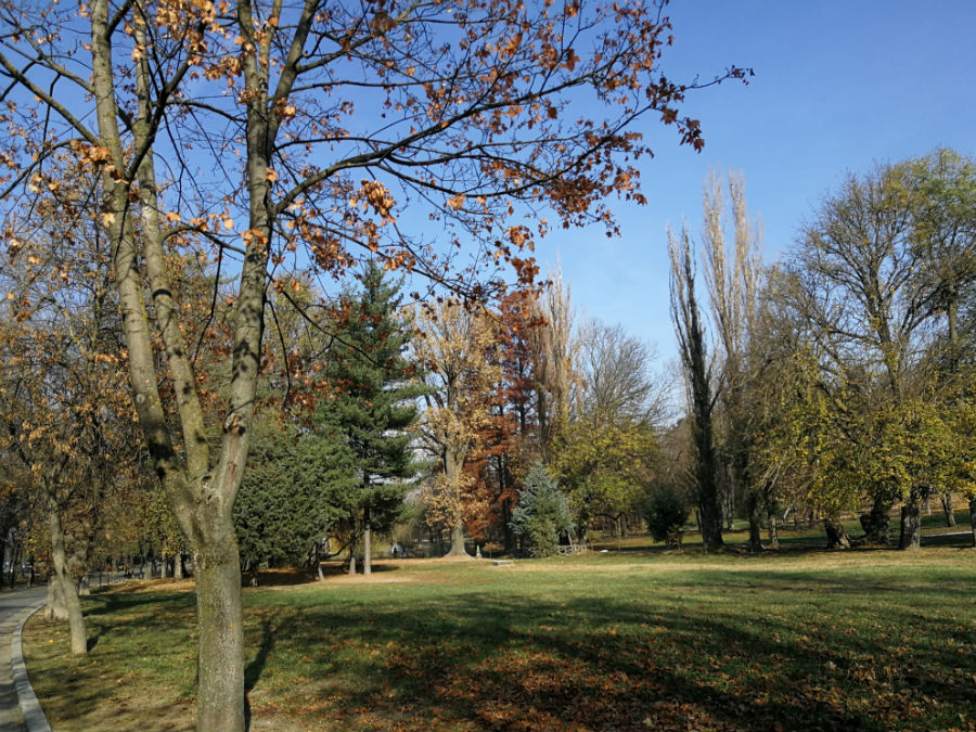 Parcul Nicolae Romanescu: Minunea verde din Banie, in poze superbe - Poza 3