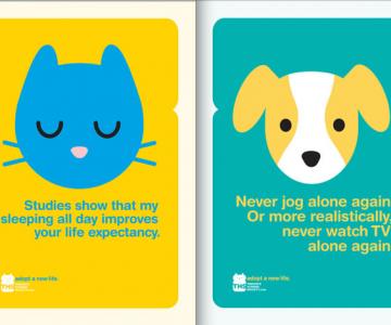 Adopta un animal: cele mai bune reclame